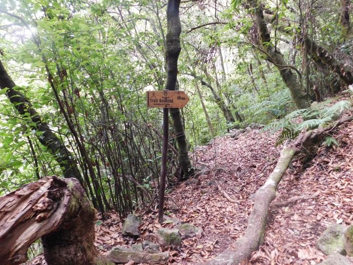 Oznaczenie dla trail runnersów